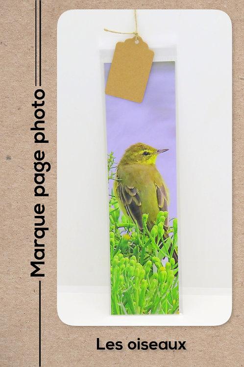 Oiseaux modèle 30 Verdier