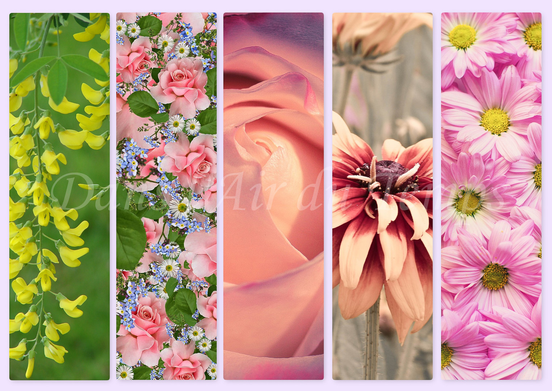 marque page fleur 5.jpg