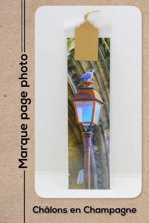 Châlons en Champagne modèle 43 Le pigeon de Notre Dame en Vaux