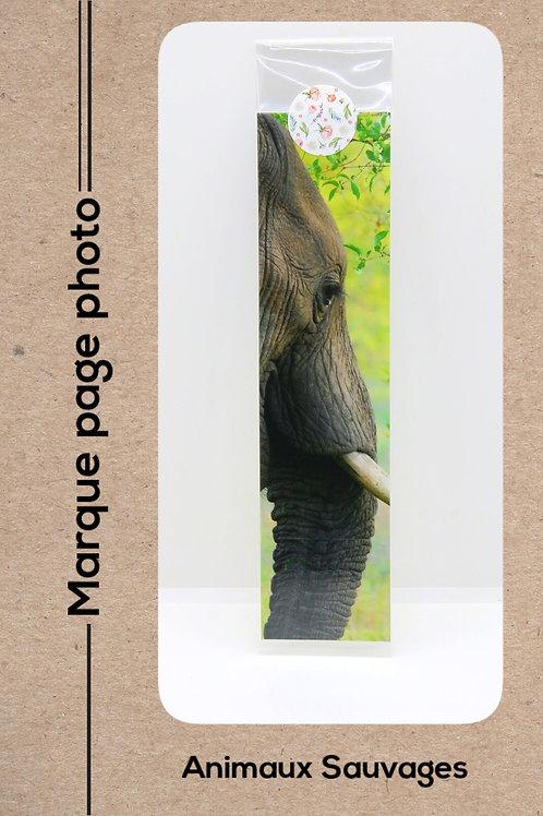 Animaux sauvages modèle 16 Eléphant