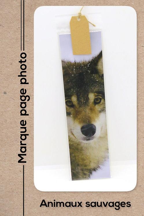 Animaux sauvages modèle 6 Loup