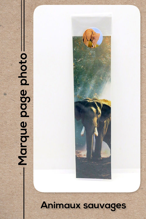 Animaux sauvages modèle 10 Eléphant