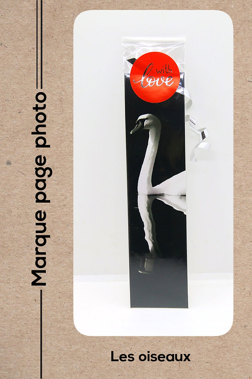Oiseaux modèle 7 Cygne