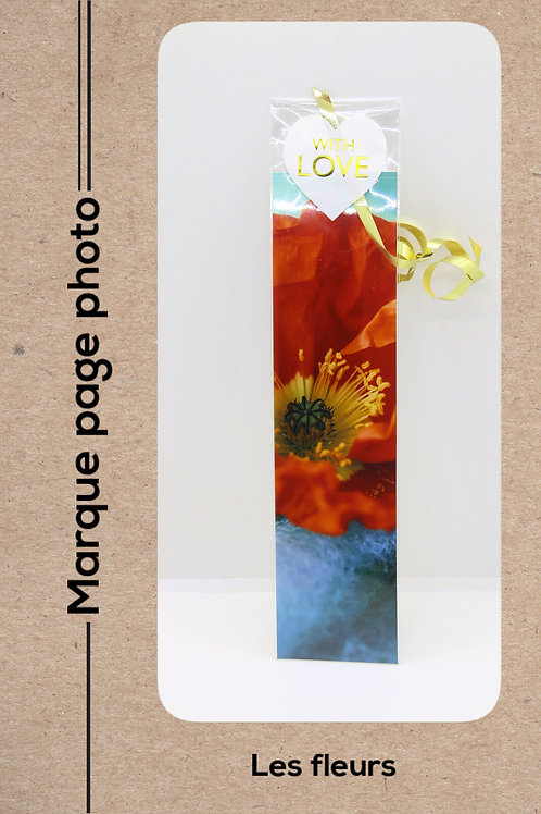 Fleurs modèle 5 Coquelicots