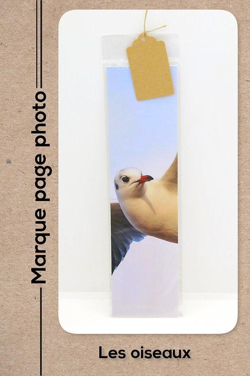Oiseaux modèle 28 Mouette
