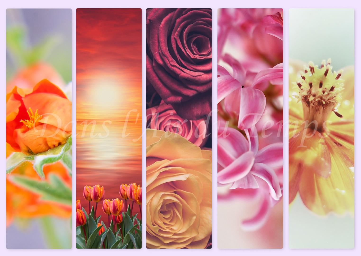 marque page fleur 4.jpg