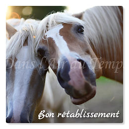 cartebonretablissement17.jpg