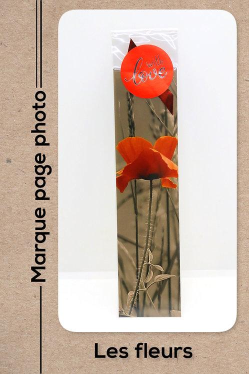 Fleurs modèle 4 Coquelicots