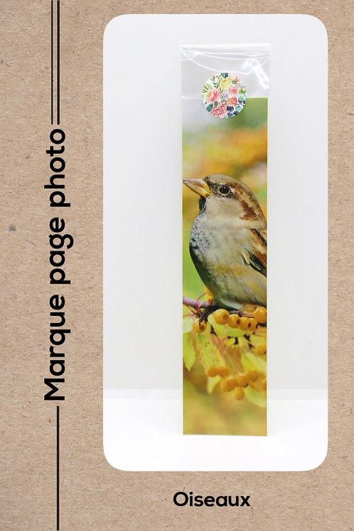 Oiseaux modèle 8 Moineau