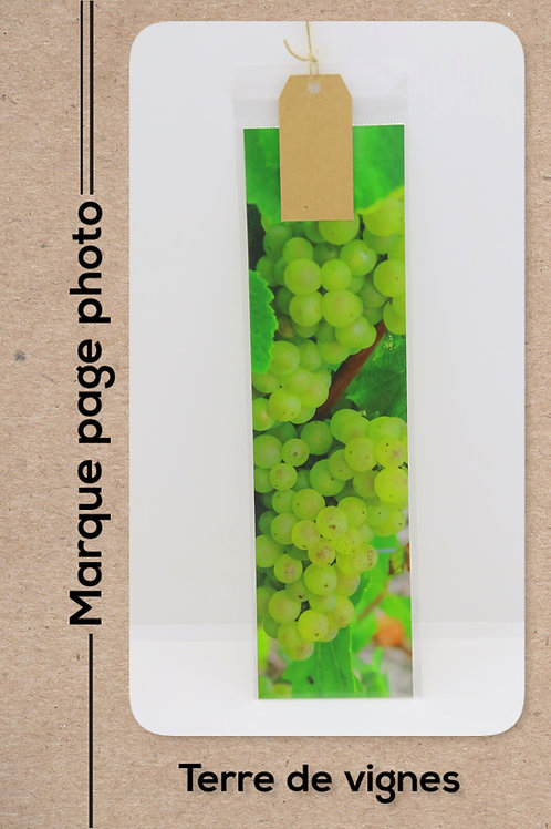 Terre de vignes modèle 9 Raisins
