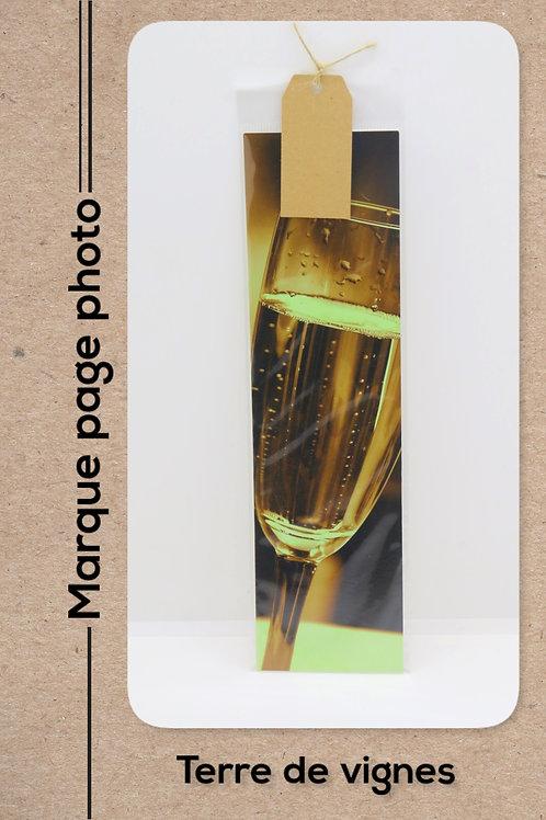 Terre de vignes modèle 6 Champagne
