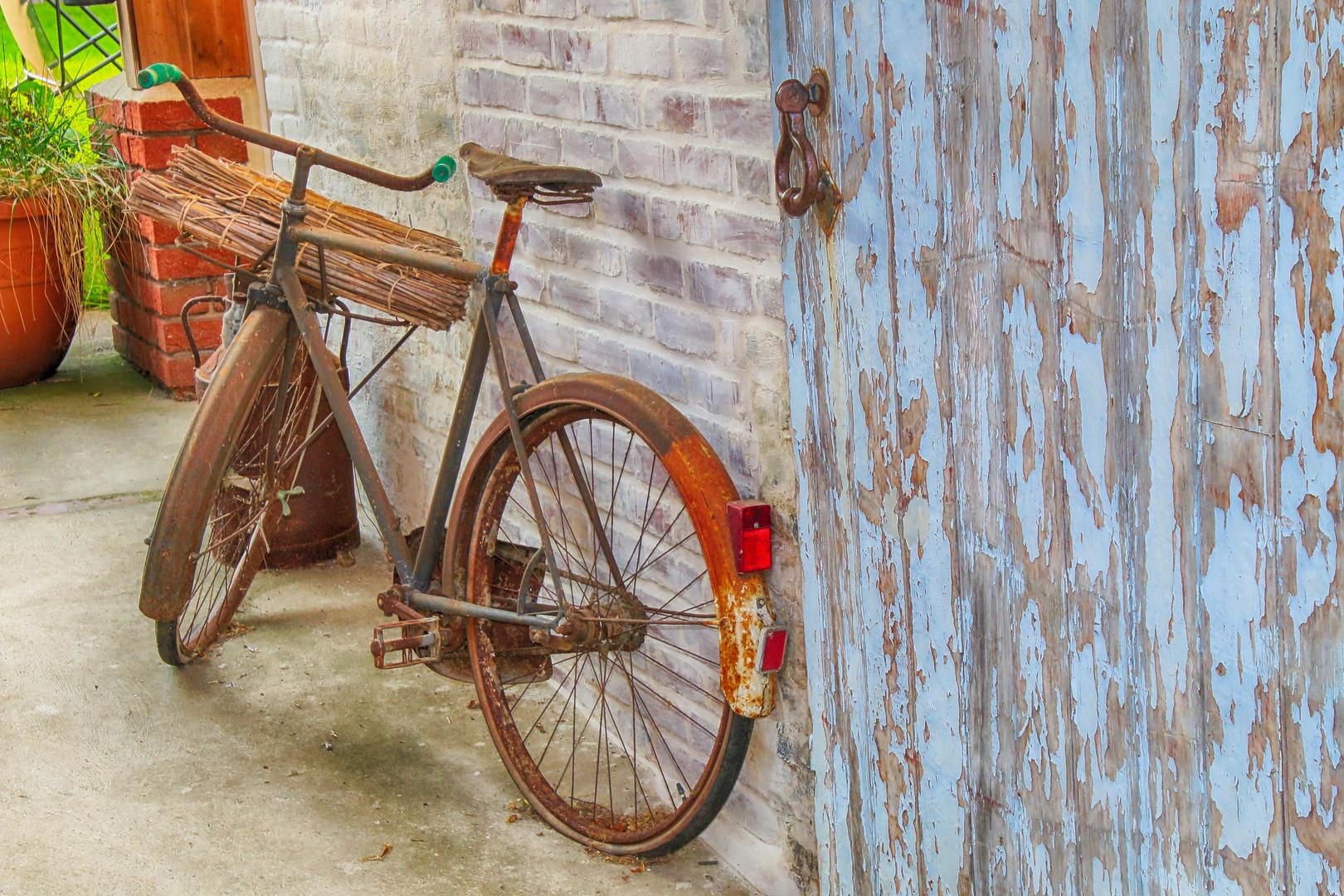 bike-4476360.jpg