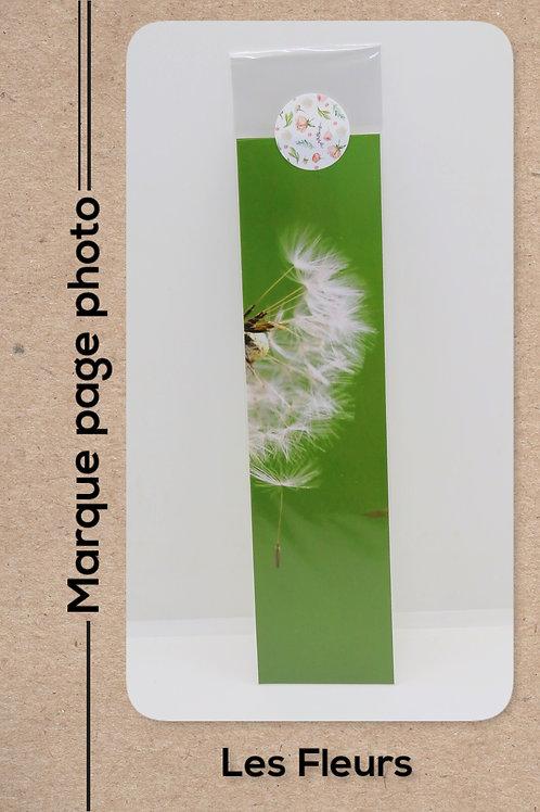 Fleurs modèle 20 Pissenlit en graines