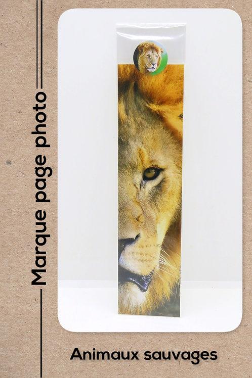 Animaux sauvages modèle 11 Lion