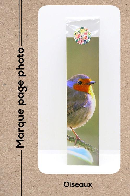 Oiseaux modèle 9 Rouge gorge