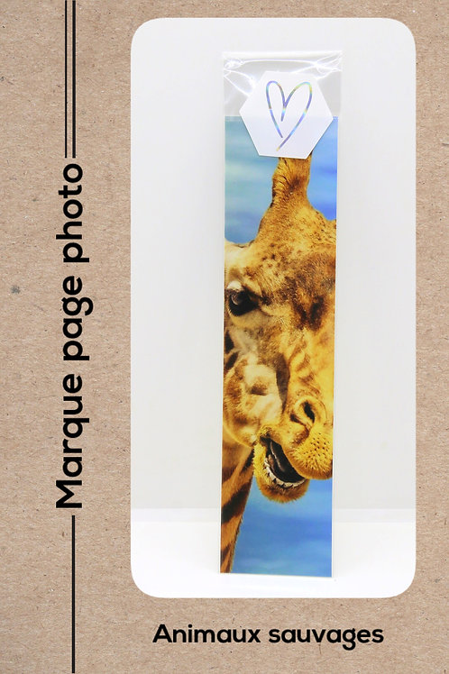Animaux sauvages modèle 18 Girafe