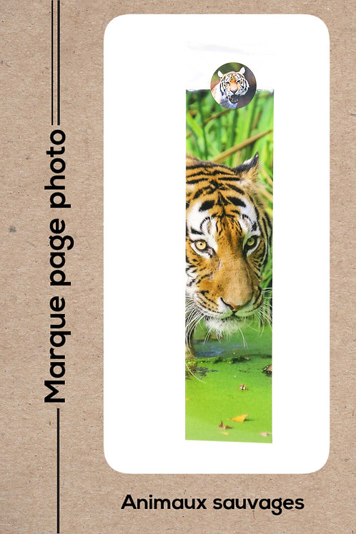 Animaux sauvages modèle 15 Tigre