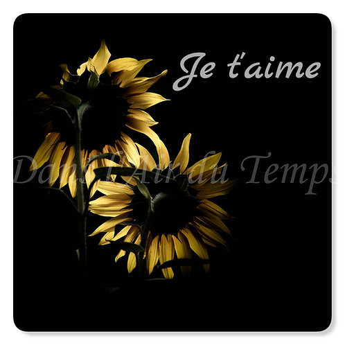 Carte photo Amour Duo de tournesols