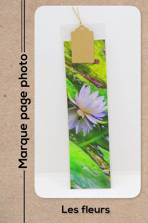 Fleurs modèle 31 Nénuphar blanc