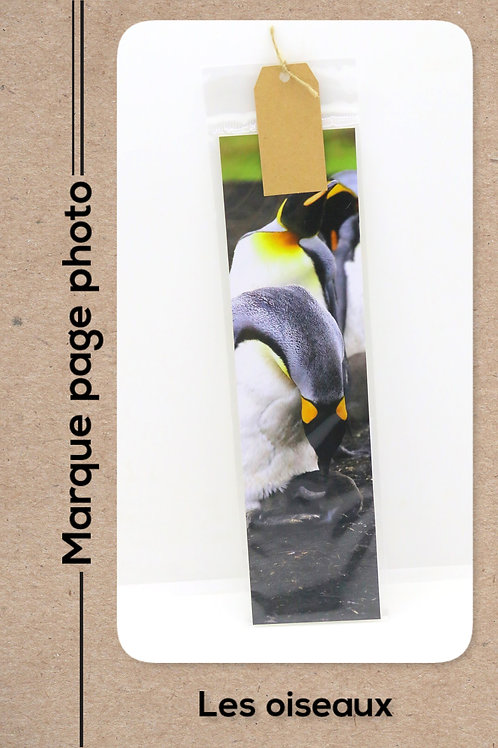 Oiseaux modèle 1 Pingouin