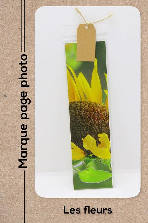 Fleurs modèle 5 Tournesols