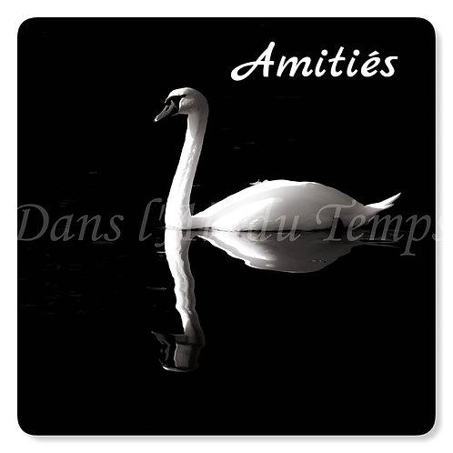 Carte photo Amitiés 4 Oiseaux Cygne