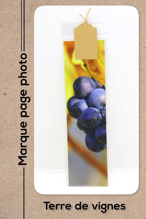Terre de vignes modèle 14 Raisin noir