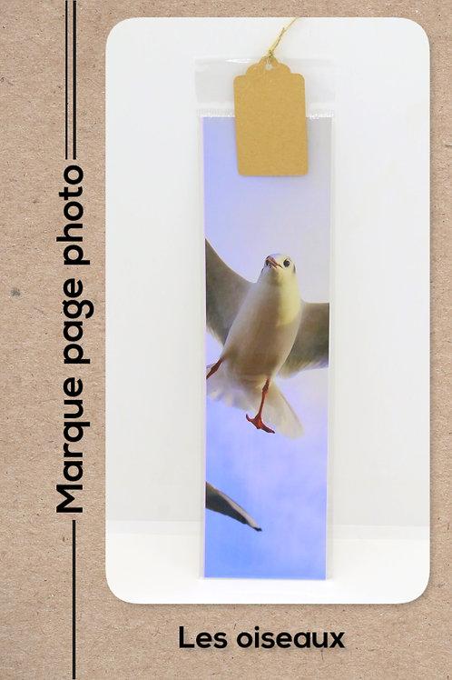 Oiseaux modèle 29 Mouette