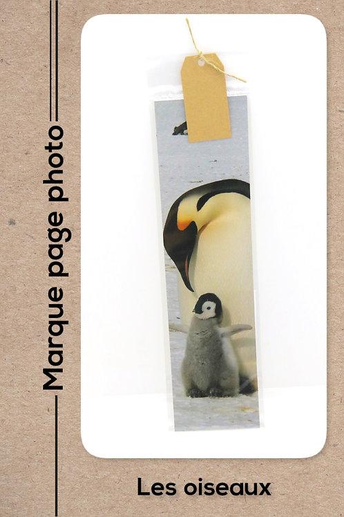 Oiseaux modèle 2 Pingouin