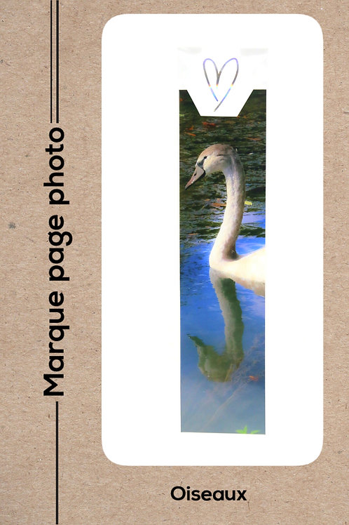 Oiseaux modèle 6 Cygne