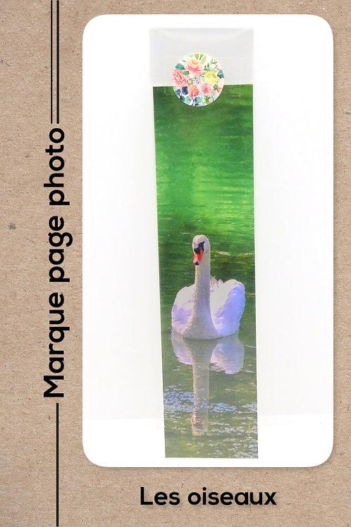 Oiseaux modèle 5 Cygne