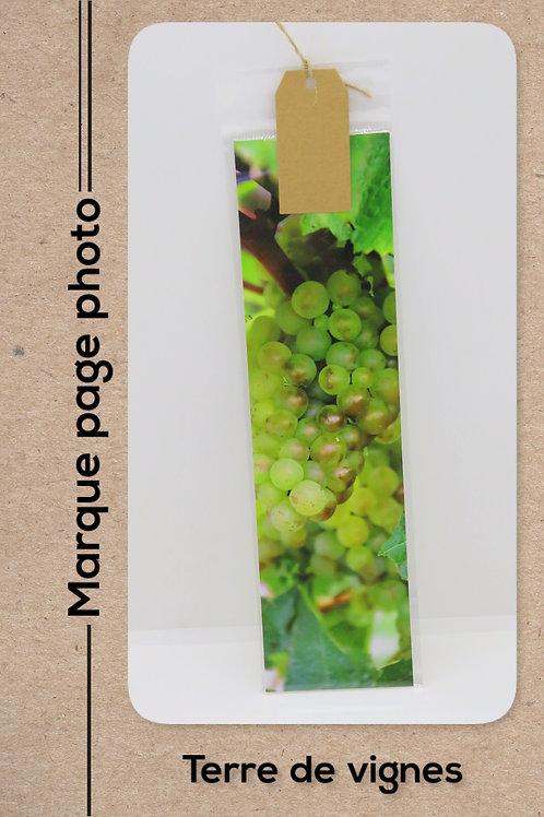 Terre de vignes modèle 5