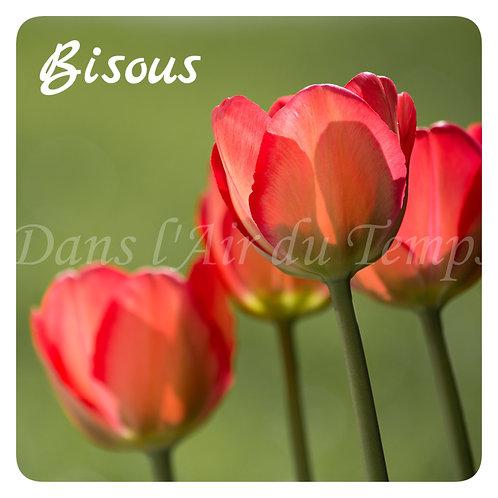 Carte photo Bisous 4 Fleurs Tulipes