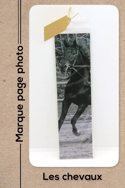 Cheval modèle 8 en noir et blanc