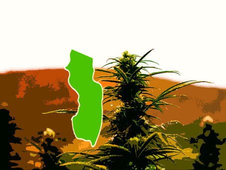 New Jersey Just OK'd its Legal Canna-bill – What Now?