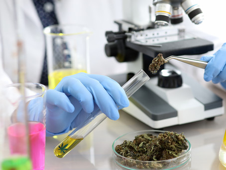 What GW Pharma's Blockbuster Acquisition Means for Cannabis
