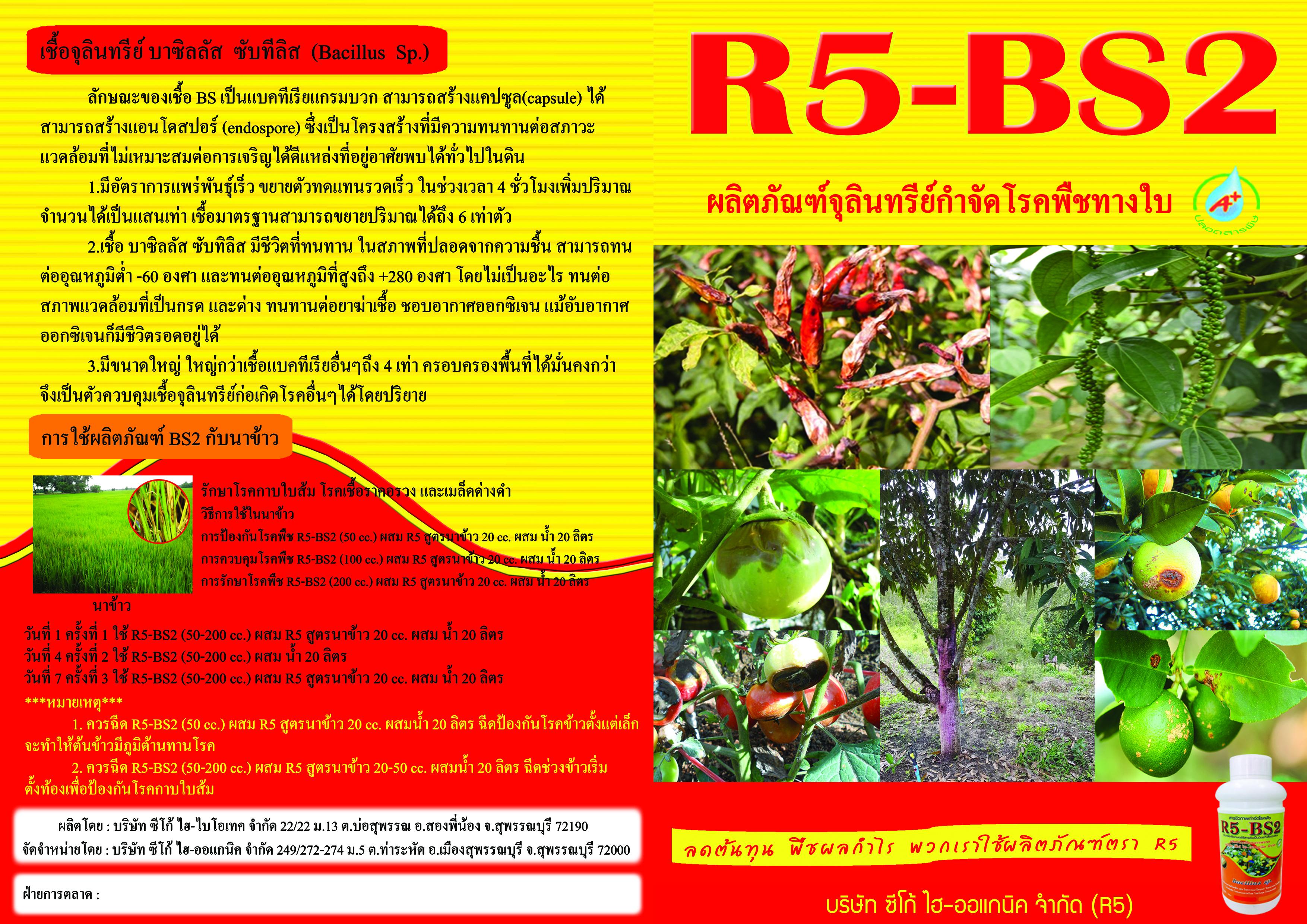BS2-newนอก