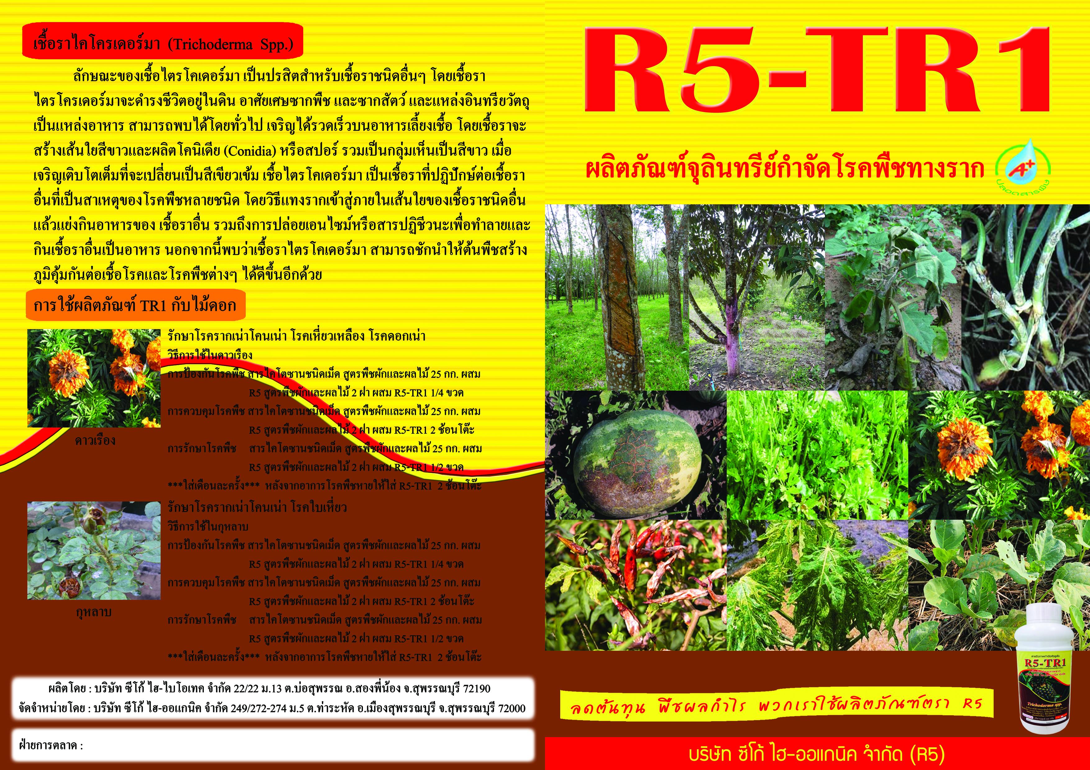 TR1-newนอก