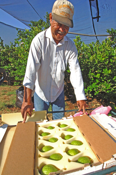 Long-time employee, Jesus Serrano