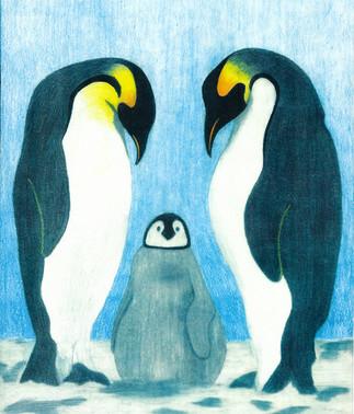 Penguins-5x5.jpg