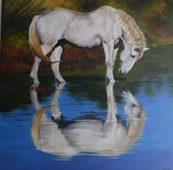 Robitaille- Miroir