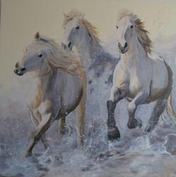 Robitaille- Les chevaux du soleil (2