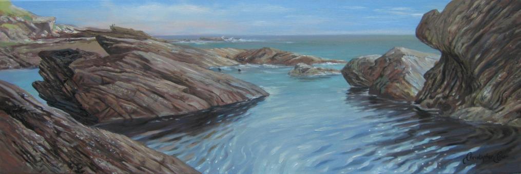 """""""Seal Bay"""""""