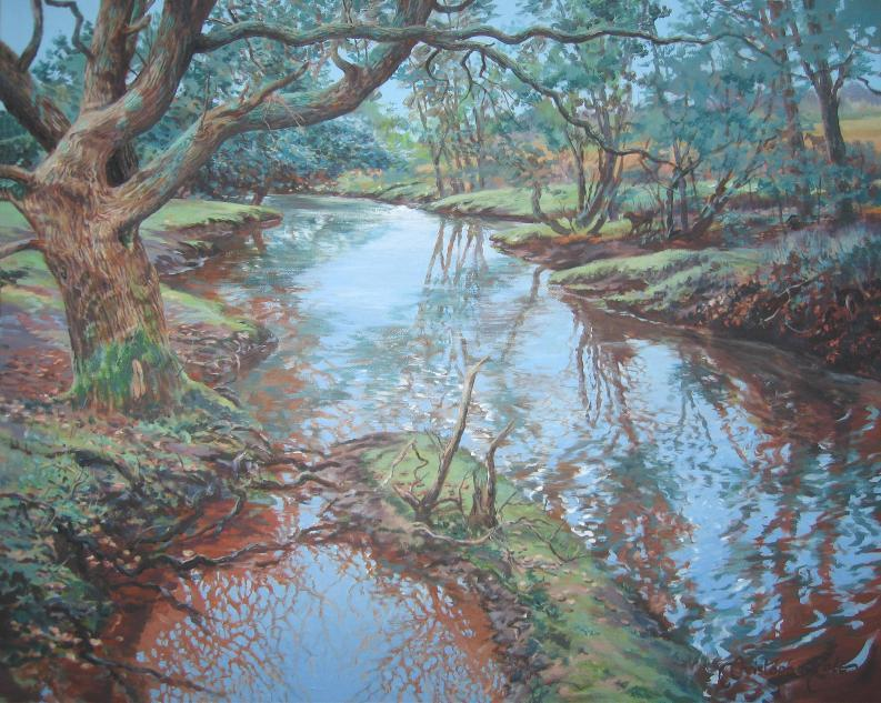 """New Forest River"""