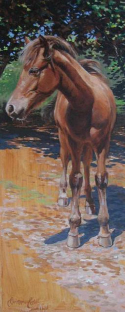 """The Wild Chestnut Foal"""
