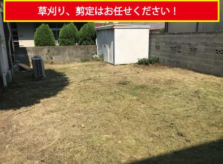 【和歌山市】芝生の草刈り、剪定はお任せください。