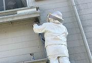 高所のハチの巣駆除の様子