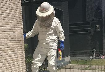 蜂駆除の様子