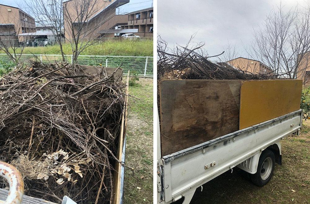 和歌山市 枯れ枝回収