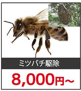 ハチ駆除料金3.jpg